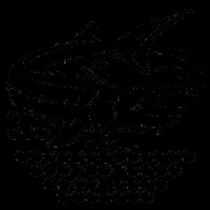 LAZIR-logo-caviar-logo-caviar