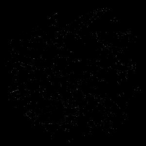LAZIR-logo-caviar-logo-fish