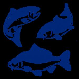 lazir-Hydrothermal-fish-logo-3