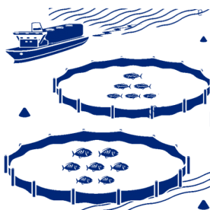 lazir-marine-cage-logo-3